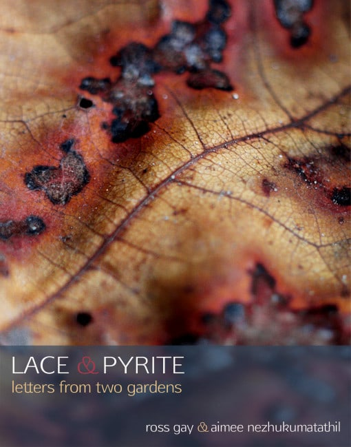 Lace-and-Pyrite_Front-Cover_Final-510x649